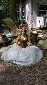2017 Faire Fairy